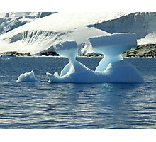 Ice Sculptures Photographic Print