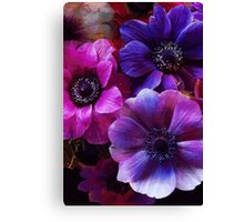 Pink And Purple - Floral Art Print Canvas Print