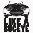 Like a Bugeye! by ruckus666
