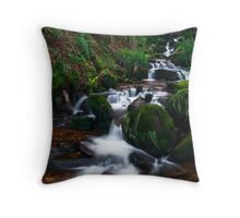 Hebers Ghyll, Ilkley, Yorkshire Throw Pillow