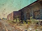 Disappearing Railroad Blues by MotherNature