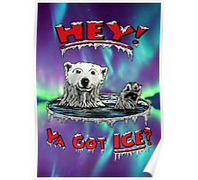 "Waving Polar Bear: ""Hey! Ya Got ICE?"" Poster"