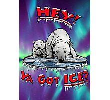 "Mother & Cub Polar Bears: ""Hey! Ya Got ICE?"" Photographic Print"