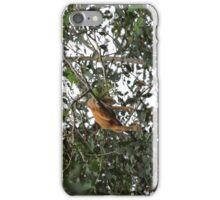 Blond Howler Monkey iPhone Case/Skin