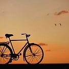 The Bike by Maria  Gonzalez