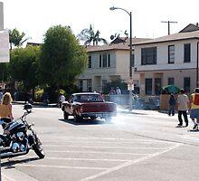 Venice Beach California by Barry Elkins