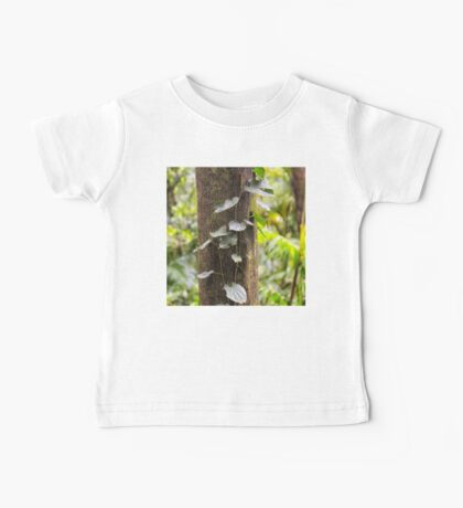 Beautiful rainforest vine on a tree Baby Tee