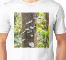 Beautiful rainforest vine on a tree Unisex T-Shirt