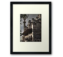 The New Mosque, Istanbul Framed Print