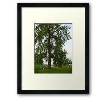 Boys by a Big Tree Framed Print