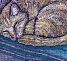 cat on a cushion  Sticker