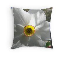 Springtime Macros V Throw Pillow