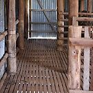 Old Shearing Shed by SharonD