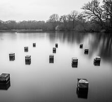 Connaught Water by Asif Patel