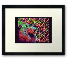 Colorful Lion Framed Print