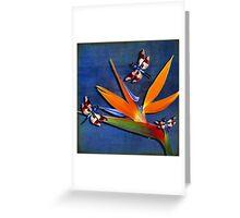 DRAGONS AND PARADISE Greeting Card