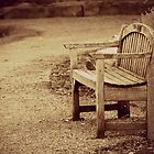 Lonely Park Bench by Renee Ellis