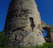 The South Tower, Pevensey Castle by wiggyofipswich