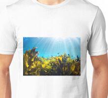 Seaweed Light Rays Unisex T-Shirt