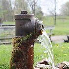 Fresh Water by Brandonleo