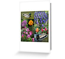 Flowers and Feathers - Keukenhof Collage Greeting Card