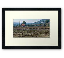 Beaume de Venise vines Framed Print