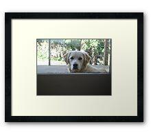 Casper hellooo Framed Print