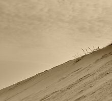 Dune by HAPhotography