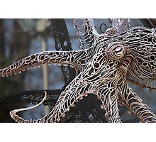 Octopus Photographic Print