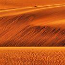 Desert Sands by Jill Fisher