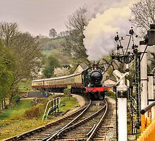 Buckfastleigh steam train by Peterwlsn