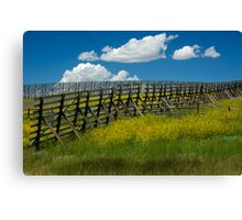 Snow Fence - Wyoming Canvas Print