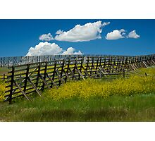 Snow Fence - Wyoming Photographic Print