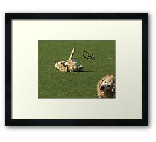 Hey Mom! Get a Picture of This Crazy Porter! Framed Print