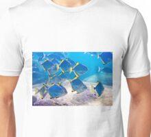 Blue School Unisex T-Shirt