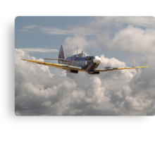 Spitfire - 145 Sqdn RAF Canvas Print