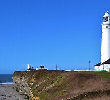 Nash Point Lighthouse by Paula J James