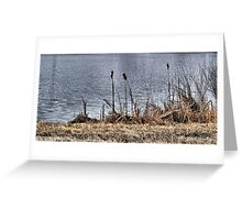 River Reeds Greeting Card