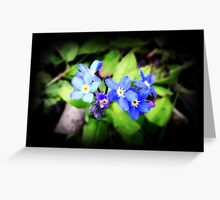 A Touch Of Blue Greeting Card