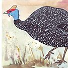 Guineafowl Conservation by Maree Clarkson