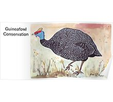 Guineafowl Conservation Poster