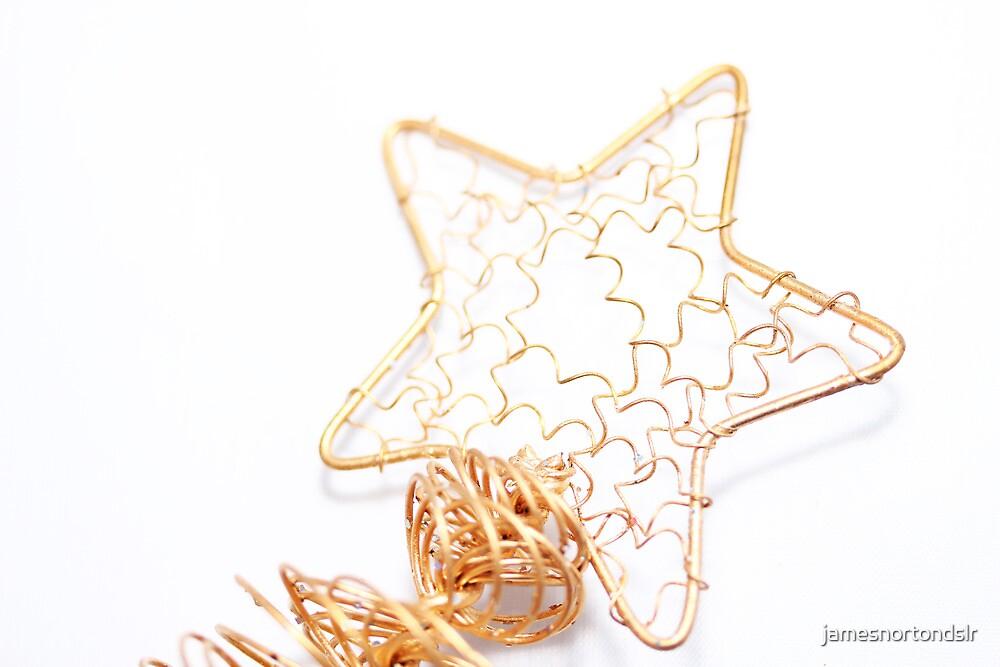 A tree's star by jamesnortondslr