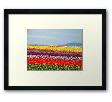 blanket of colors Framed Print
