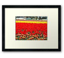 pastel colors Framed Print