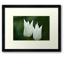 Twin Love Blossoms Framed Print
