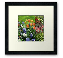 Blaze of Colour - Keukenhof Tulip Collage Framed Print