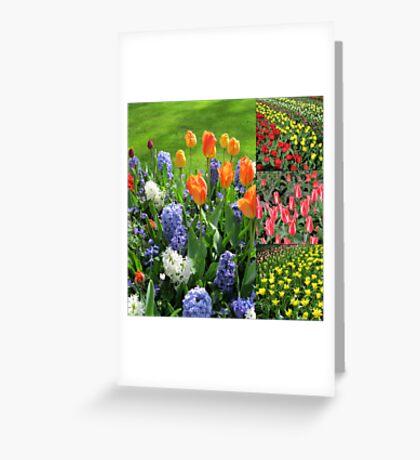 Blaze of Colour - Keukenhof Tulip Collage Greeting Card