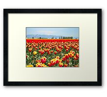 yellow ,red ,both? Framed Print