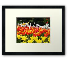 Iam different Framed Print