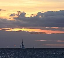 Sunset Sail by Tamie Buffington